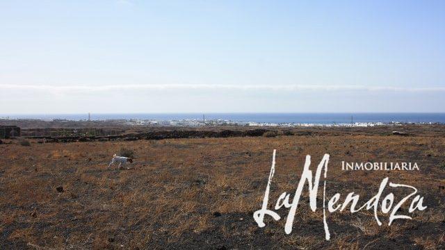 7030 - plot of land Lanzarote (4)